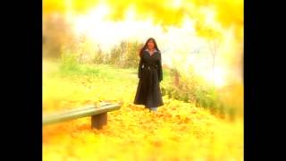 Laima Žemaitytė - Tango lietuje