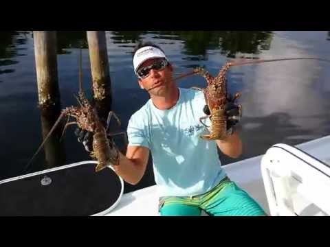 Catching Lobsters With Your Bare Hands Looks Hilariously Impossible