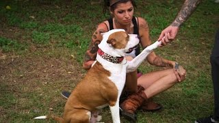 Tania and Perry Welcome a New Addition to the Family   Pit Bulls and Parolees