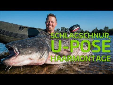 Schlagschnur + U-Pose mit Haarmontage #1 | www.zeck-fishing.com