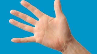 How to Use Your Hand to Measure Portion Sizes