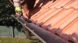 Dachreinigung Mit Dachbeschichtung   Professionelles Reinigen & Beschichten Von Dächern   SteinRein