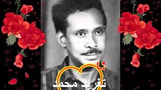 اغاني حصرية احمد الجابرى انت يا قلبى المتيم كنت خالى _ تغريد محمد تحميل MP3