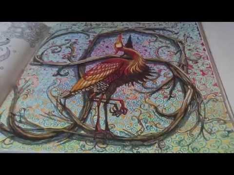 Nuhun Gemisi Boyama Kitabı Noahs Ark Coloring Book Hayrullah Kaya