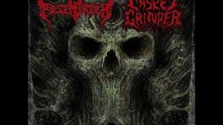 POSTMORTEM / CASKET GRINDER   Split CD