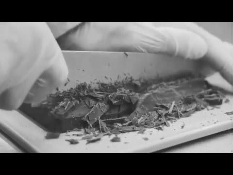 Sologelato Artigianale Gelateria