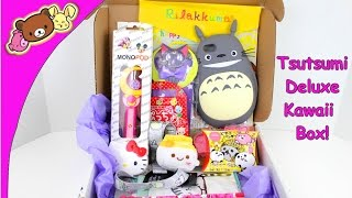 Kitties And Doughnuts June 2015 Tsutsumi Deluxe Kawaii Subsciption Box!