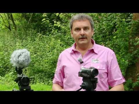 Test: Mikrofone für Videofilmer