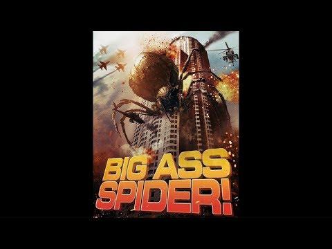 Wielkodupy pająk youtube