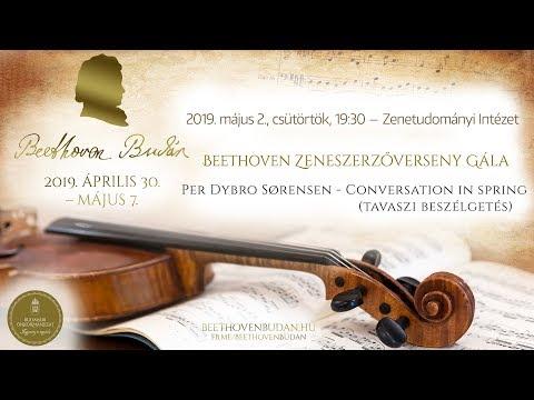 Beethoven Budán 2019 - Zeneszerzőverseny Gála: Per Dybro Sørensen - video preview image