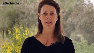 Anne Baer reveals the main ingredients of Israeli Innovation and Technology Transfer