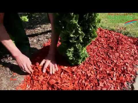 Mulch - Einsatz im Garten