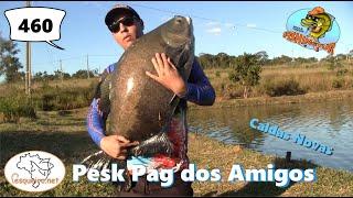 Os grandes Tambas do Pesk Pag dos Amigos - Fishingtur na TV 460