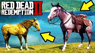 HOW TO GET EVERY LEGENDARY HORSE FREE in Red Dead Redemption 2! Unlock All Best Horses RDR2!