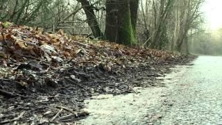 preview picture of video 'Séquestration et Enlèvement d'un homme de 36 ans - Boullay-les-Troux, Essonne'