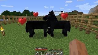 Minecraft - Baby Horse!
