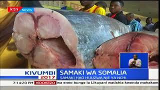 Biashara ya samaki yangoa nanga jiji la Mogadishu-Somalia