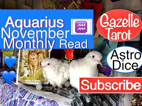Aquarius Monthly November ♒️🌹Karma guides Your Spirit💙#tarot #aquarius #horoscope