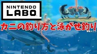 【ニンテンドーラボ】カニの釣り方と泳がせ釣りの方法!まさかの展開にびっくり!