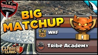 WHF vs Tribe Academy in Champs I? Account Progress and Planning - What's coming up? | Clash of Clans
