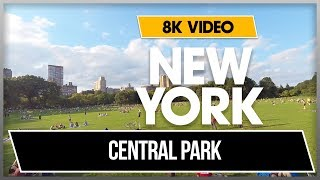 8K 360 VR VIDEO  CENTRAL PARK - NEW YORK SHEEP MEADOW 2018 END OF SUMMER