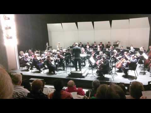 Playing first violin second chair in the 2015 Christmas concert with Northwest Chicago Symphony Orchestra.
