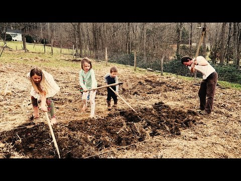 We'll Work For Food (Gardening With Kids)