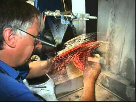 Stewart Davis Glass Engraver