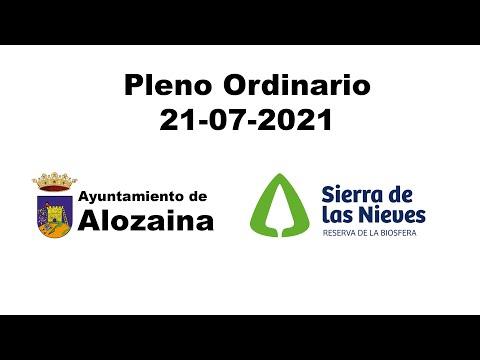 PLENO ORDINARIO 21-07-2021