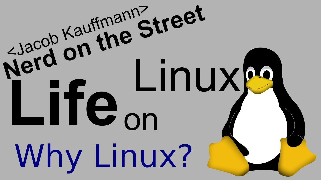 Why do you even WANT Linux?