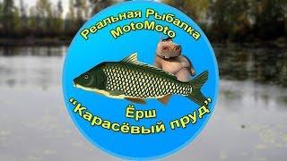 Как поймать отмороженного ерша в реальной рыбалке