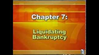 Bankruptcy 2: Types of Bankruptcy