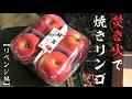 Grilled apples with bonfire 【apples for revenge】