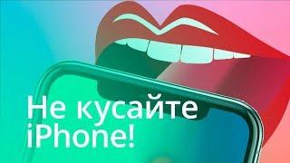 #Главное - Что будет, если укусить iPhone?
