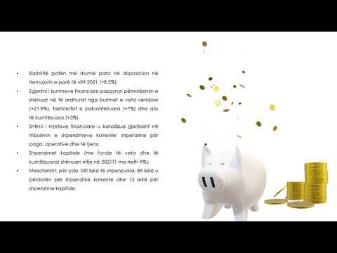 Raporti i Financave Vendore 2021T1