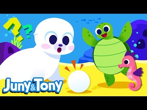 Whose Egg is It?   Animals Song for Kids   Seahorse, Lobster, Whale and Sea Turtle   Juny&Tony