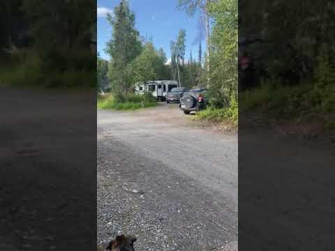 Video Of Denali/Byers Lake, AK