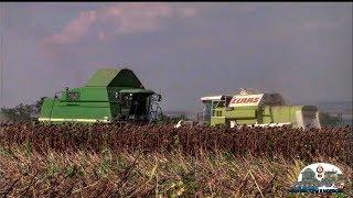 Клип про Молдавских комбайнёров и трактористов,Версия 2019