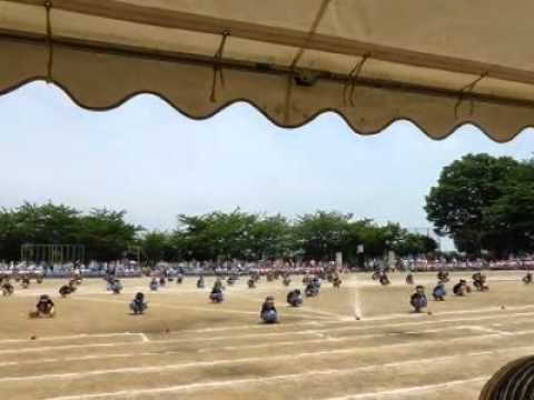 マイ スライドショー2015.05.23晴天の運動会:小川小学校