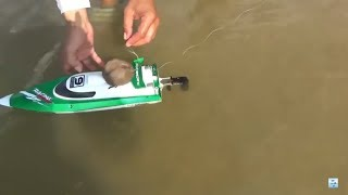 Đi câu cá đập -  dùng chiêu này để bắt cá to