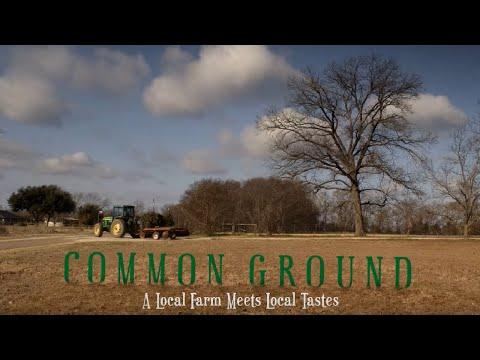David Fisher-- Common Ground