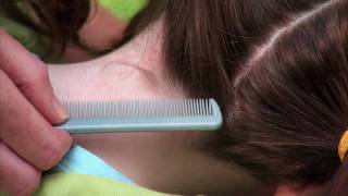 How to check your child for head lice