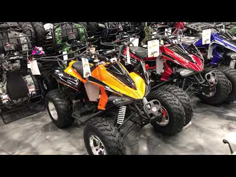 2019 AWL Raptor 150cc Full Size Upgraded in Jacksonville, Florida - Video 1