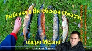 Рыбалка на озере березовское витебская обл