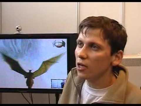 КРИ (2004)