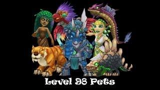 Wizard101 Deep Leviathan Level 98 Storm Pet Quest
