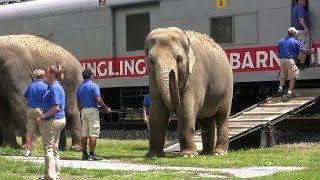 Ringling Brothers Circus Train And Animal Walk At Hershey