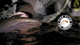 Five Flies for January 2019 - Fly Fishing the Arkansas Pueblo Tailwater