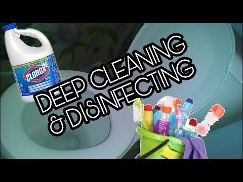 How To Deep Clean a Toilet | EXTREME DEEP CLEANING & DISINFECTING ROUTINE! | Crazy Cleaner