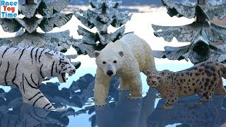 Toy Wildlife Animals On Ice! Fun Learning Animal Names For Kids